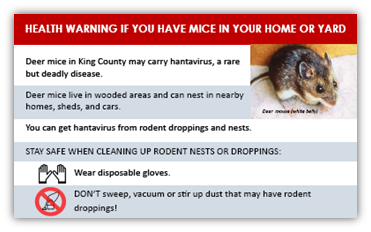 How to get rid of rats and mice - King County