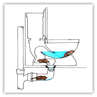 Diagram of how rats travel from sewer systems into a toilet