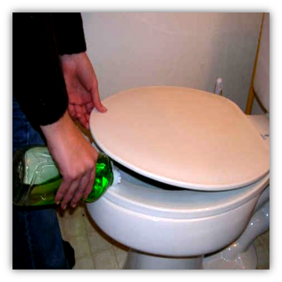 Keep lid down and squirt dishwashing liquid in toilet to reduce surface tension then flush the rat down