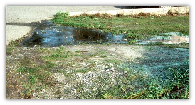 What To Do If You Have A Septic System Failure King County