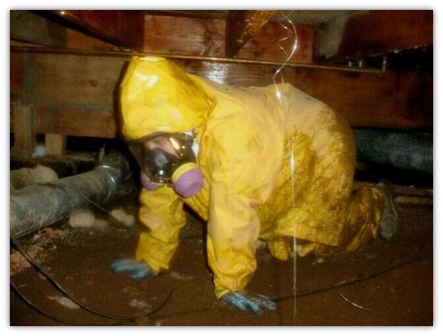 Dress for proper hygiene when managing a sewage spill clean-up.