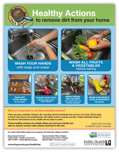 Poster of Healthy Actions to remove dirt from your home.
