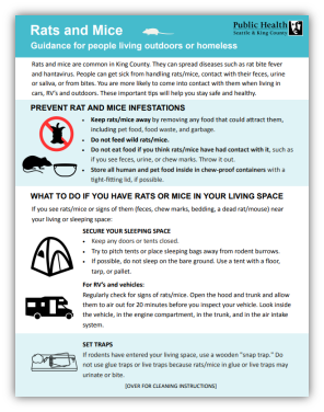 Flyer: Rats and Mice: Guidance for people living outdoors or homeless