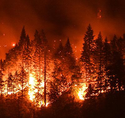 Burn Bans & Fireworks - King County