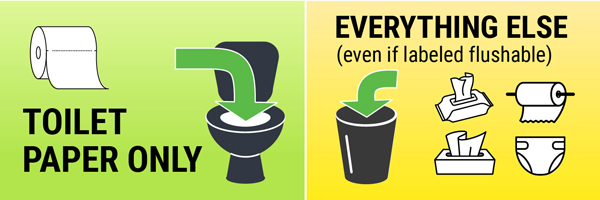 Only toilet paper belongs in the toilet. Do not flush anything else (even if it is labeled flushable).
