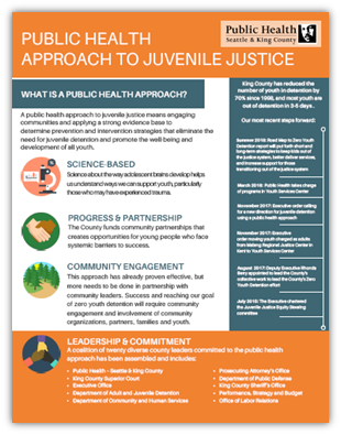 Flyer: Public Health Approach to Juvenile Justice
