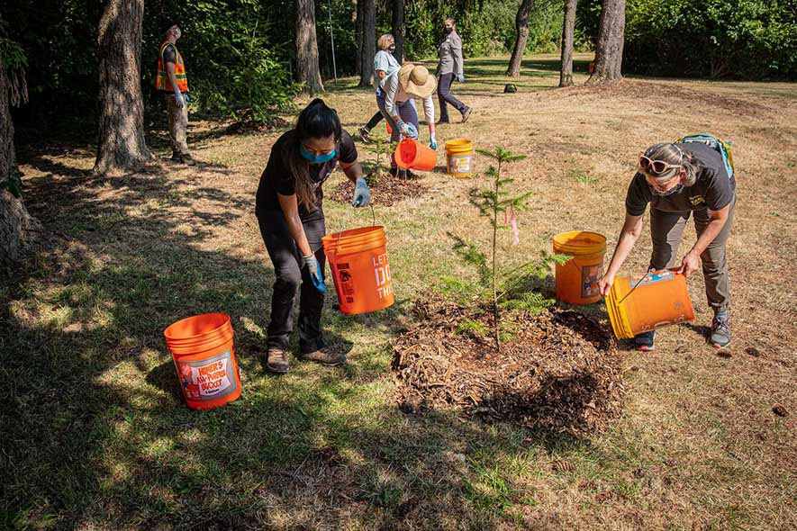 A group of volunteers planting trees