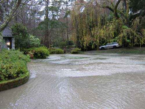 Photo of floodwaters flowing through a homeowner's yard