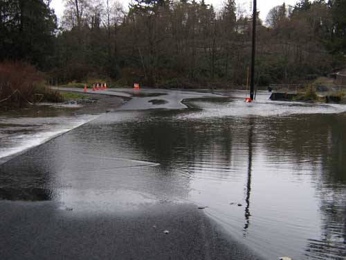 Photo of stormwater flowing over a road