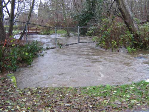 Photo showing flooded creek