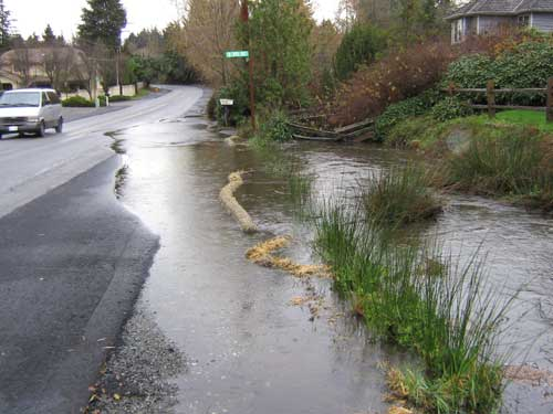 Photo showing stream flooding road