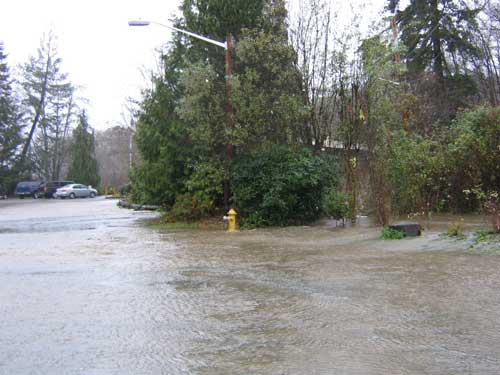 Photo of flood waters flowing across a gravel parking lot