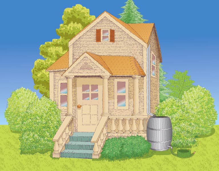 Set up rain barrels at your house