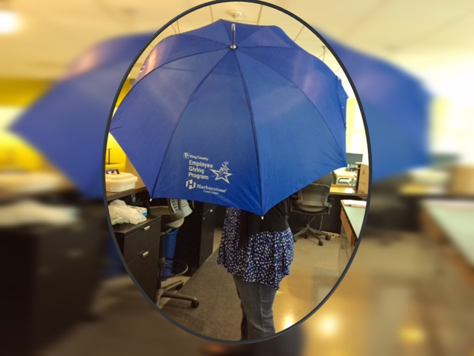 LeadershipGiving_umbrella