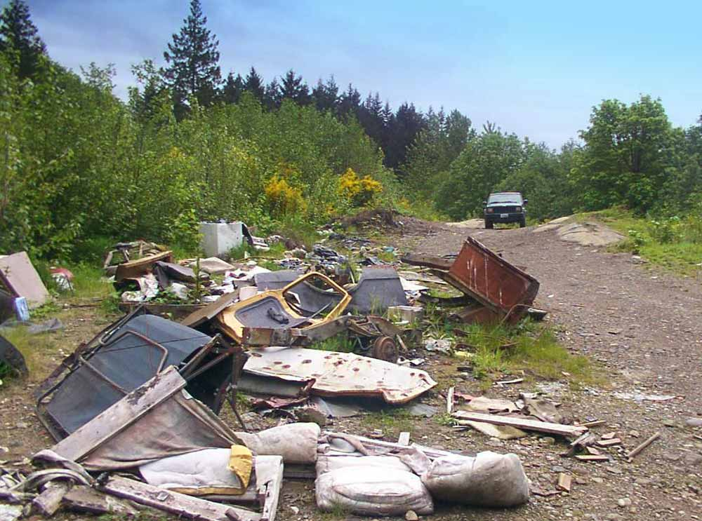illegal dumping site on king county road