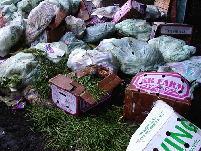 Commercial food waste grants