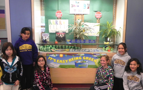 """Renton Park's conservation pledge tree """"It's Easy Being Green"""" display case"""