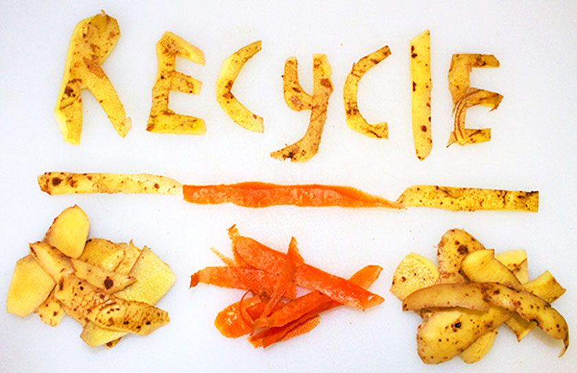 Food recycling: collection and processing