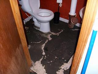 Sewage contains disease-causing contaminants that can require extensive clean up and restoration.