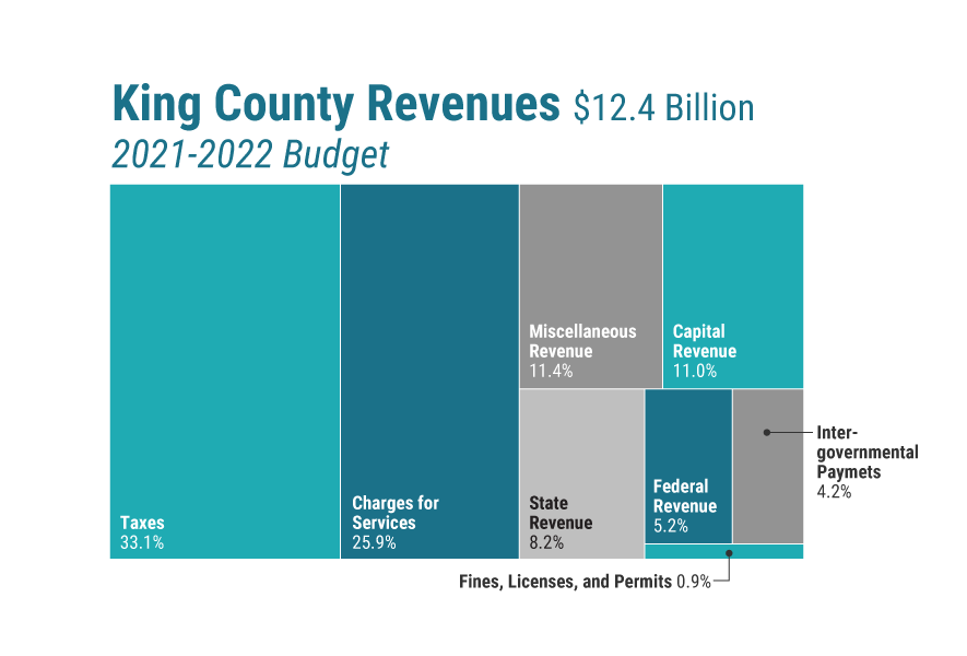 Chart showing King County revenues