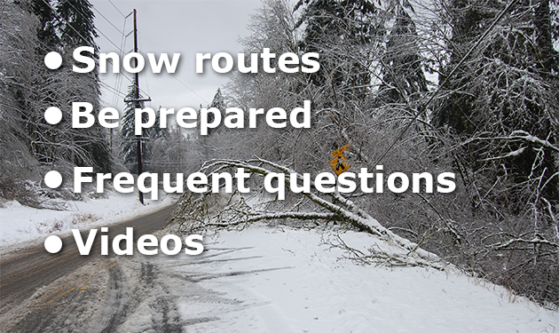 Unincorporated King County snow and ice response