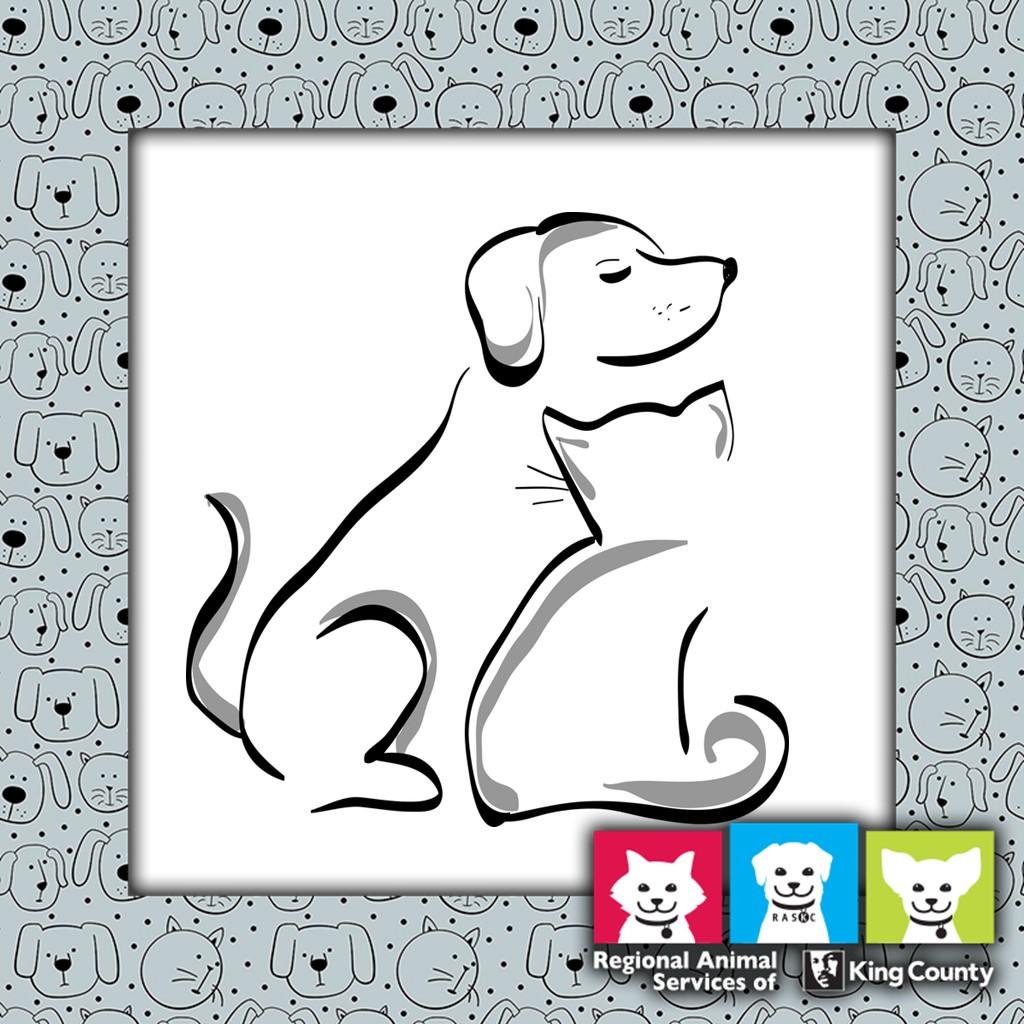 Pet Adoption Program King County