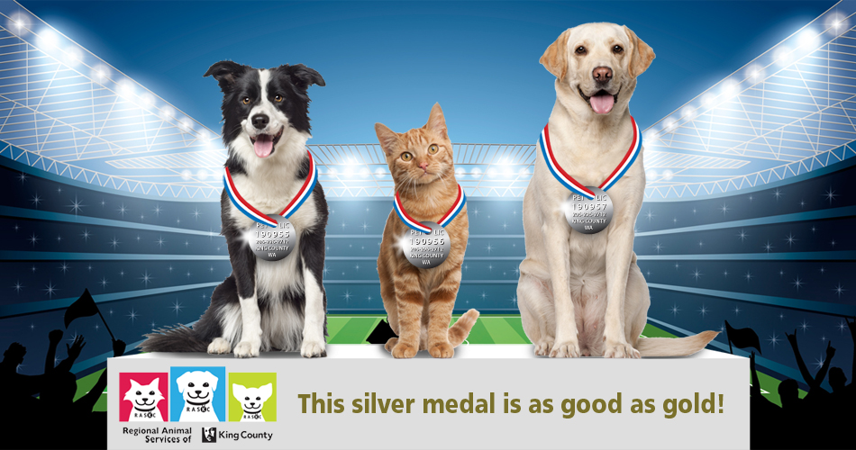 THIS-SILVER_MEDAL-eng-950x500
