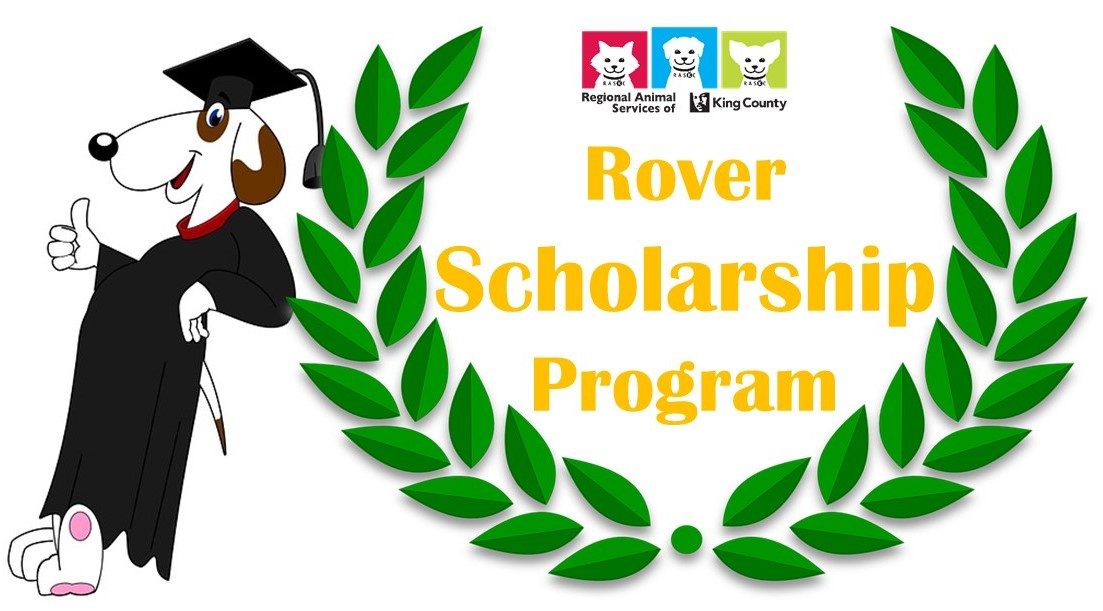 ScholarshipDog_pagebanner_June2018