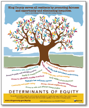 Determinants of Equity poster