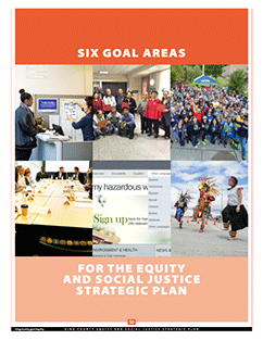 Pro-equity Governance through Six Goal Areas