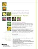 2011 King County Noxious Weed Board Annual Report - click to download