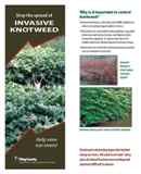 Stop the Spread of Invasive Knotweed - click to download