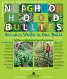 Neighborhood Bullies - click to download