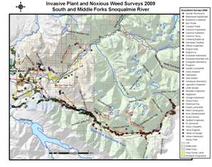 2009 Map of Invasive Plant and Noxious Weed Surveys in the South and Middle Fork Snoqualmie River Basins - click for larger image