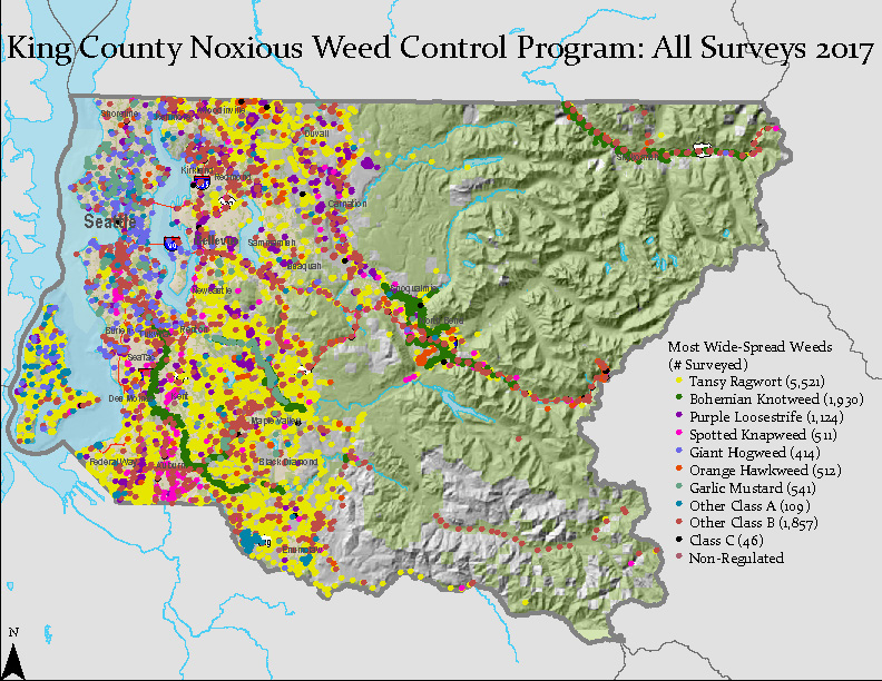 Map of King County Noxious Weed Control Program All Surveys 2017