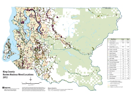 Map of regulated noxious weeds in King County, Washington based on 2012 surveys - click for larger image