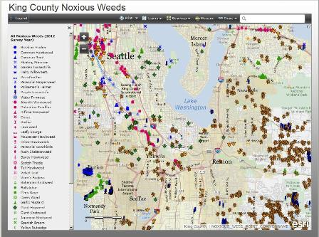 King County Noxious Weed Map - click to open map application
