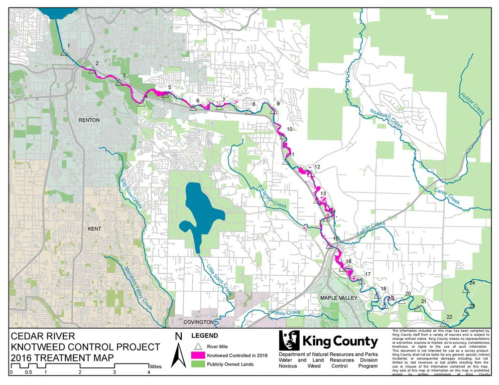Map of the Cedar River Knotweed Control Project