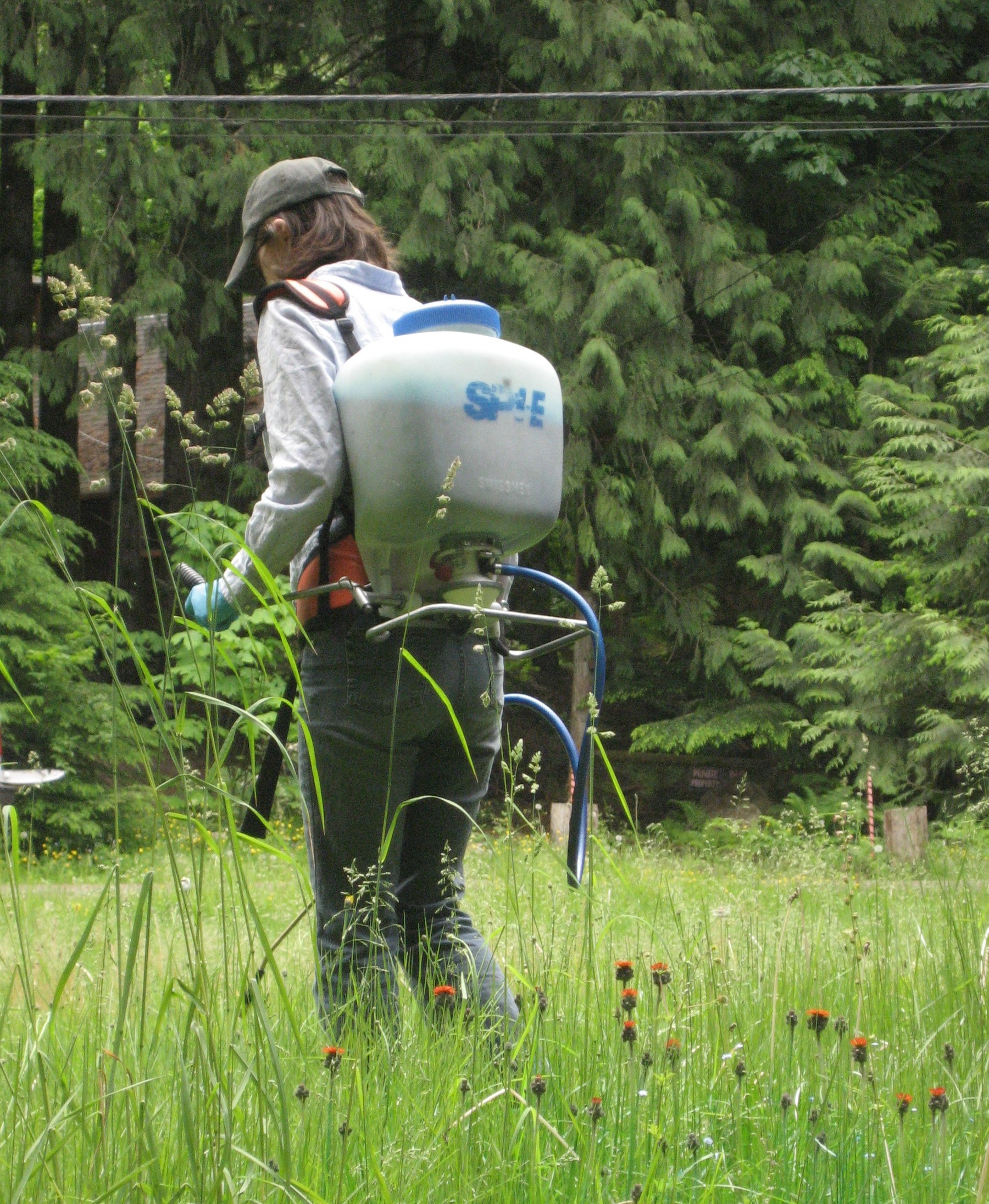 spraying-noxious-weeds2