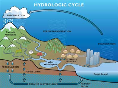 Illustration of the hydrologic cycle as an ecological process