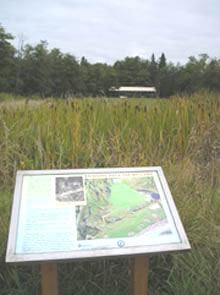 Photo showing interpretive sign by Walker Creek at the Cove property in Normandy Park