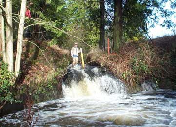 Photo of waterfall on Miller Creek on Port of Seattle property