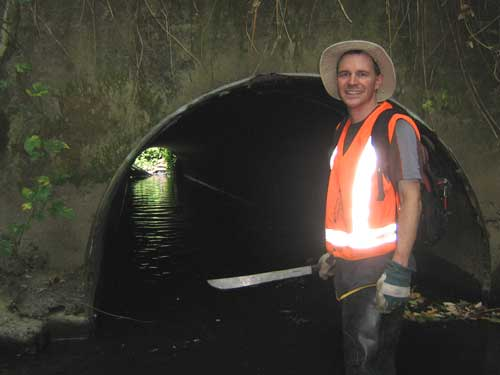 Photo showing man with machete standing knee deep in water in front of a culvert