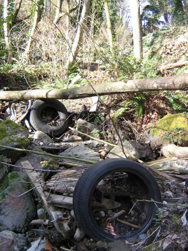 Photo showing tires and other litter in Fox Creek in Normandy Park February 25, 2008