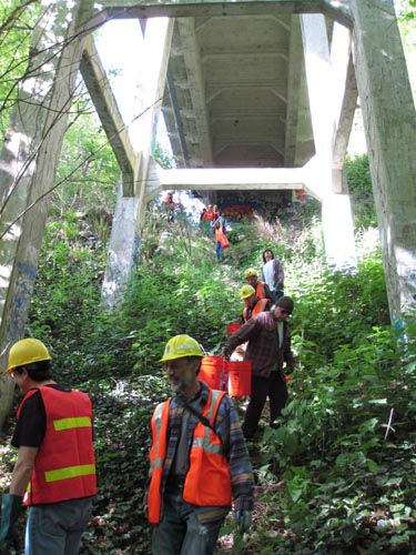 People in hard hats and safety vests walking on slope underneath a bridge