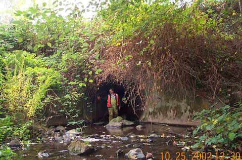 Miller Creek - Culvert at 1st Avenue South