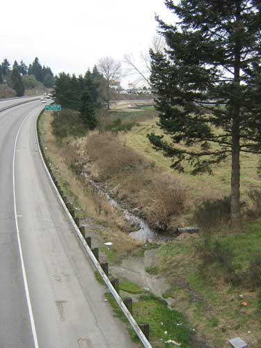 Photo of a stream in a ditch next to a highway