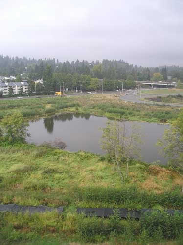 Photo of Lora Lake from SeaTac Airport third runway