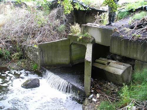 Photo of culvert at S. 160th St. on Port of Seattle property