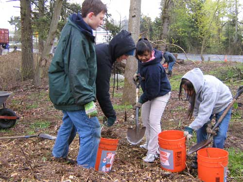 Photo of four students filling buckets with mulch
